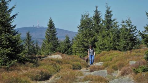 Ein Wochenende im Harz – Brocken inklusive