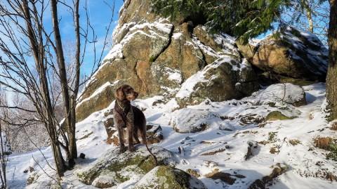 Wandertipp Harz: Lieblingsrunde Okerklippen