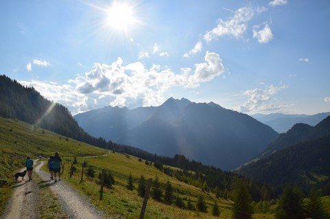 Wanderurlaub mit Hund – hundefreundliche Berghütte in Salzburg