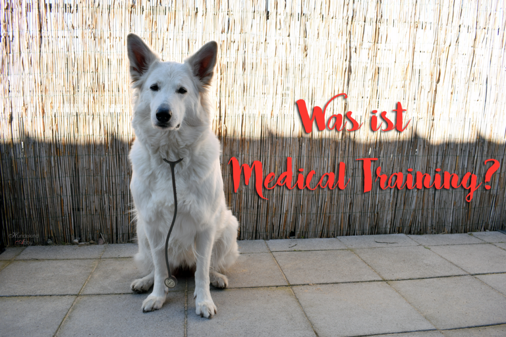 Was ist Medical Training?