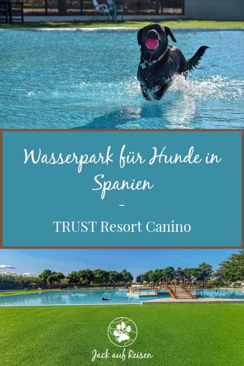 Wasserpark für Hunde in Spanien – TRUST Resort Canino