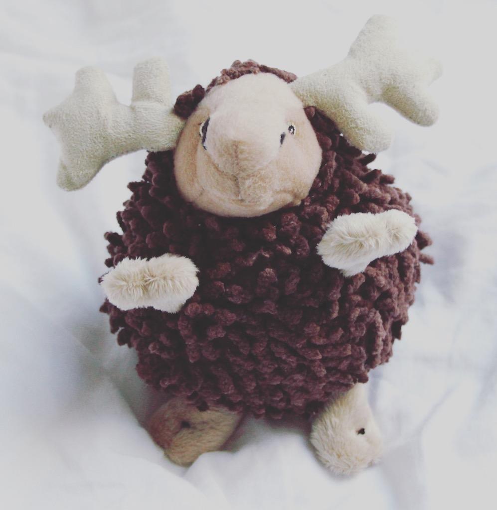 Weihnachtsgeschenk für Hunde oder Hundehalter Family Pets