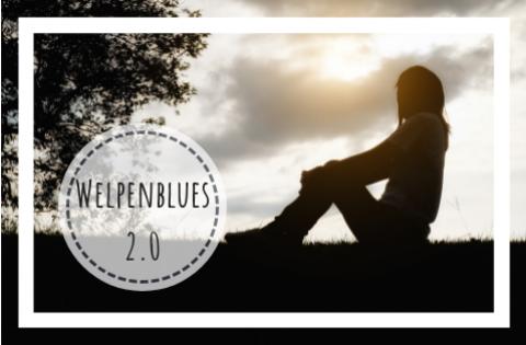 Welpenblues 2.0 (vom kleinen Hundeblog)