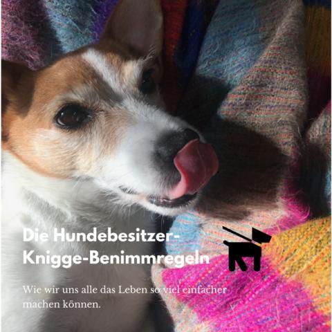 Die Knigge-Benimmregeln für Hundehalter