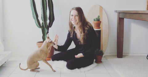 Warum du wissen solltest, wie dein Hund lernt