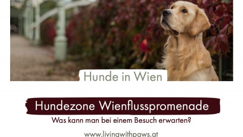 Hundezone – Wienflusspromenade
