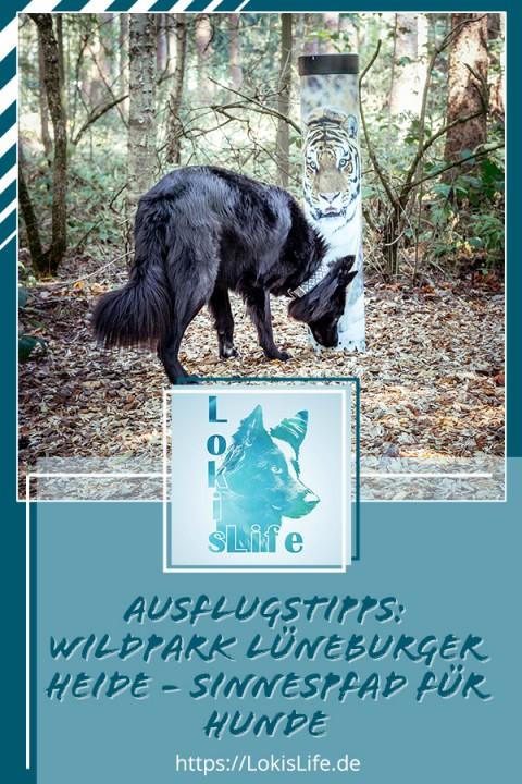 Ausflugstipp – Wildpark Lüneburger Heide: Hunde sind nicht nur willkommen, sondern haben ihren eigenen Sinnespfad