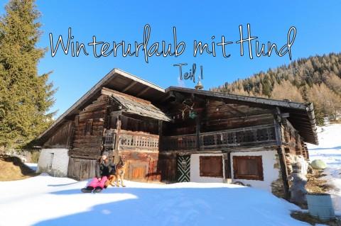 Winterurlaub mit Hund – Teil 1
