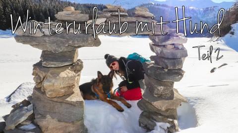 Winterurlaub mit Hund – Teil 2