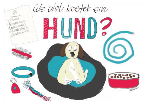 Hundehaltung: Diese Kosten kommen auf dich zu [miDoggy Parade]