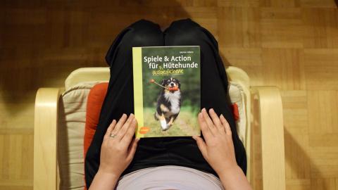 SPIELE UND ACTION FÜR (AUSGEGLICHENE) HÜTEHUNDE [WERBUNG]