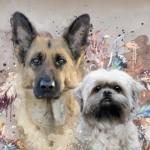 Profilbild von Queen und Püppi