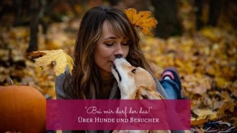 """Hunde und Besucher: """"Bei mir darf der das!"""""""