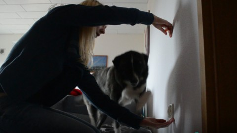 Trick im Aufbau: Sprung durch die Arme
