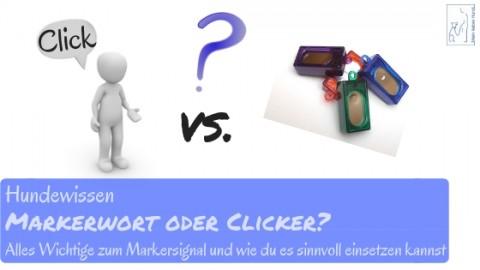 Clickertraining: Markerwort oder Clicker?