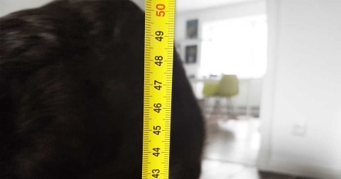 BMI BodyMassIndex beim Hund