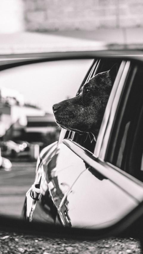 10 Dinge die in meinem Auto nicht fehlen dürfen