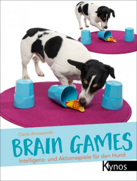 Brain Games – Rezension