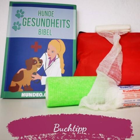 """""""Hunde-Gesundheitsbibel"""" von Hundeo.com"""