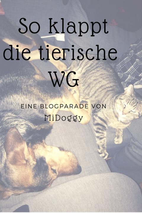 [MiDoggy Blogparade] Alle unter einem Dach-So klappt die tierische WG