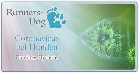 Coronavirus bei Hunden – Unnötige Hysterie!