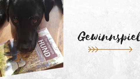 """Gewinnspiel: Gewinne das Buch """"Der aufgeregte Hund"""" von Monika Schaal"""