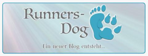 Ein neuer Blog entsteht