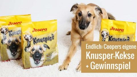 GoldenMerlo Knuspies von JOSERA + Gewinnspiel [Werbung]