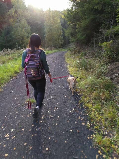 Hund aus dem Tierschutz? Meine Erfahrungen pt.1