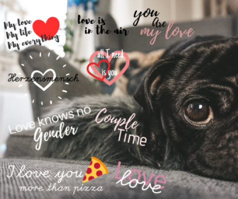 [Instagram] Valentinstags Sticker für Instagram