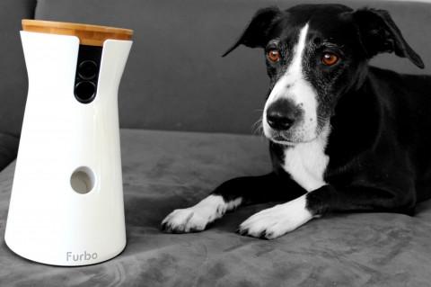 Furbo – die interaktive Hundekamera [Anzeige]
