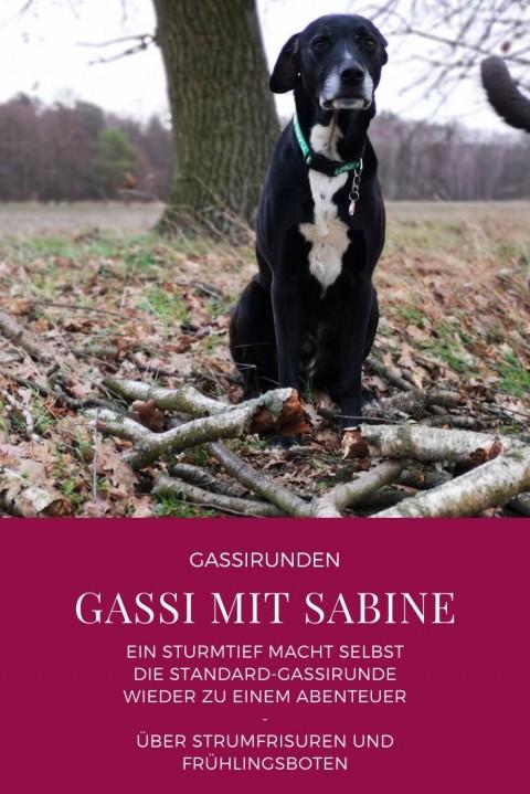 Gassi mit Sabine