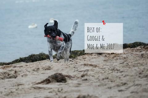 Best of: Google und Moe & Me 2017