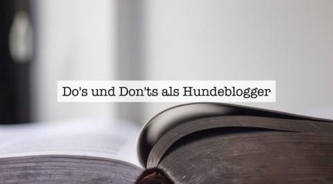 Do's und Don'ts als Hundeblogger