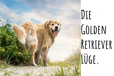 Die Golden Retriever Lüge.