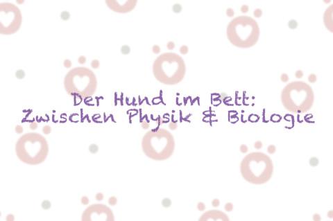 Der Hund im Bett: Zwischen Physik & Biologie