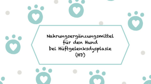 warum schlecken hunde Lüneburg