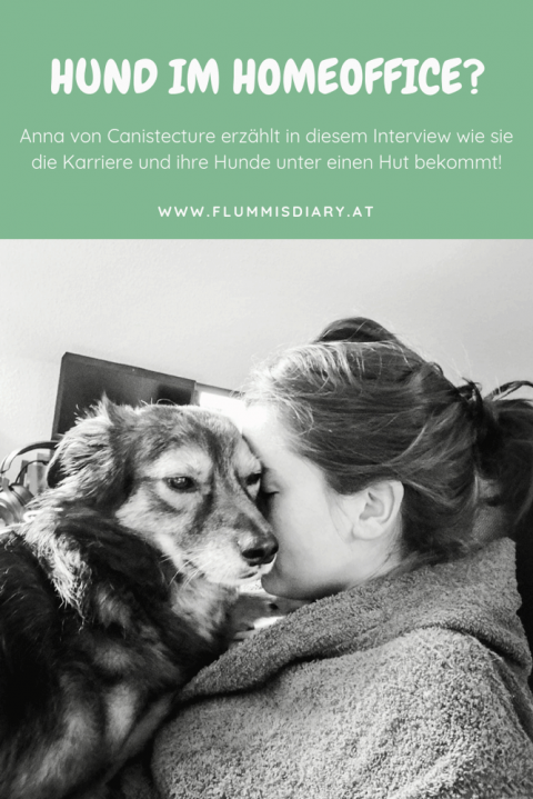 Home Office mit Hund – so geht's!