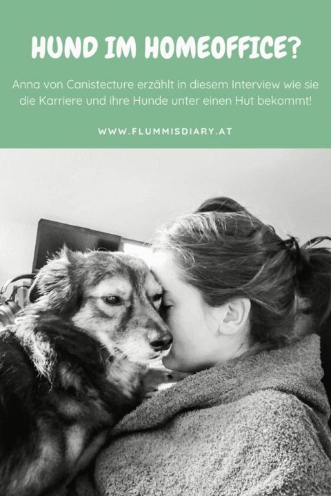 Home Office mit Hund – so geht's!