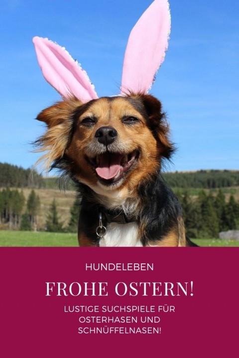 Frohe Ostern! Mit diesen Suchspielen begeistert ihr eure Schnüffelnasen