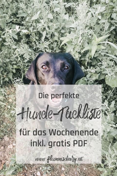 Hunde-Packliste für das Wochenende