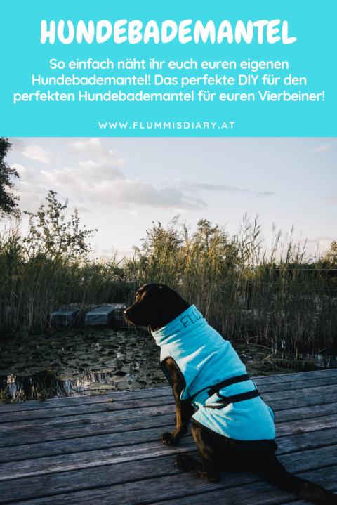 DIY Hundebademantel – Der Bademantel für euren Hund