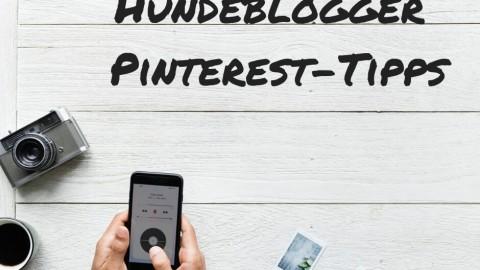 10 Pinterest Tipps für Hundeblogger