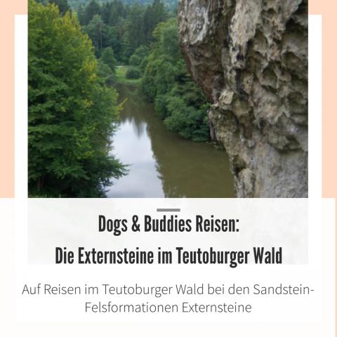 Die Externsteine im Teutoburger Wald
