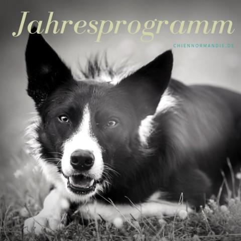Jahresprogramm von chien Normandie