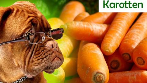 Karotten, Möhren und die Morosuppe
