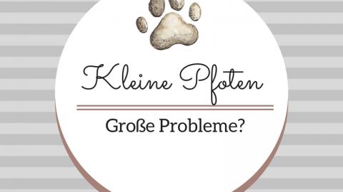 Kleine Pfoten – Große Probleme?