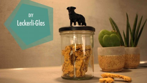 |kreativ| DIY Leckerli Glas