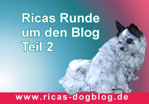 Ricas runde um den Blog #2 – Lesetipps Monat Dezember