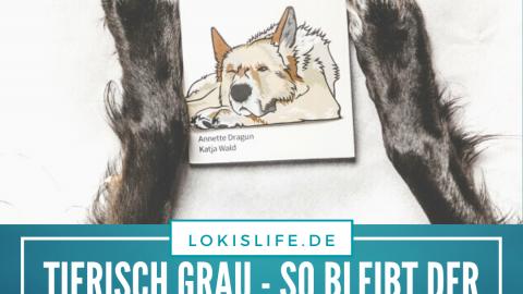 Literaturtipps: Tierisch Grau – So bleibt der Seniorhund gesund